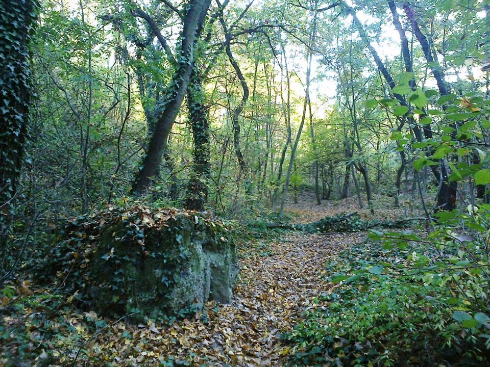 Diósdi séta (1.) – A kaptárkövek titkai
