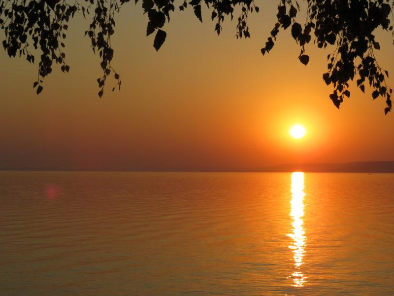 A Nap felé – Gyógyító versek