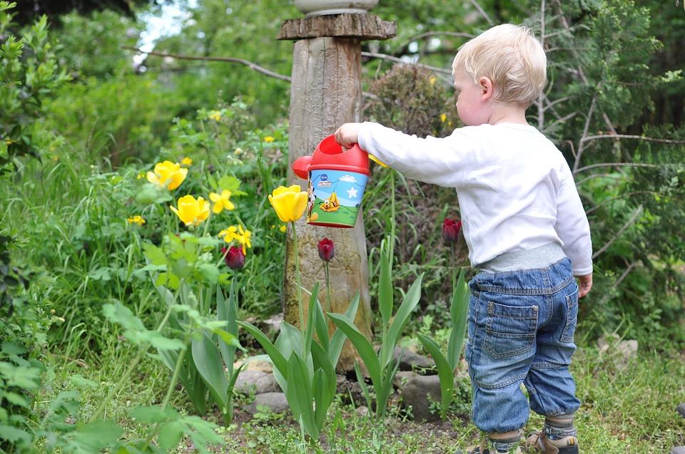 Kert gyerek locsolás virágok víz