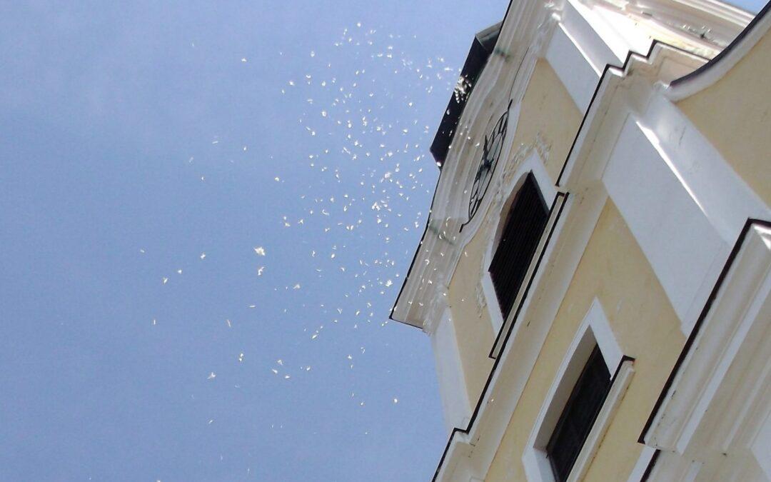 Vasárnap Budakeszin havazás várható