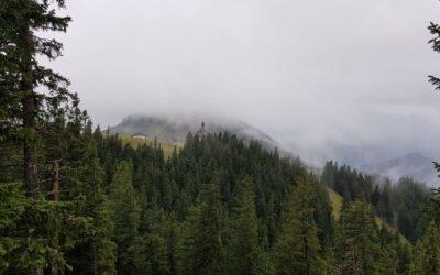 A fenyők álma – Őszi kirándulás a Bajor-Alpokban